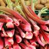 rhubarb-1422546_960_720